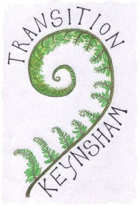 TransitionKeynLogoSmall